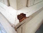 Exterior Wood Damage