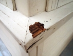 Exterior Wood Damage
